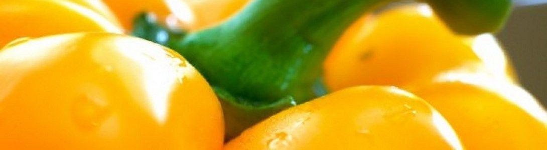 C Zwinkels paprika kwekerij